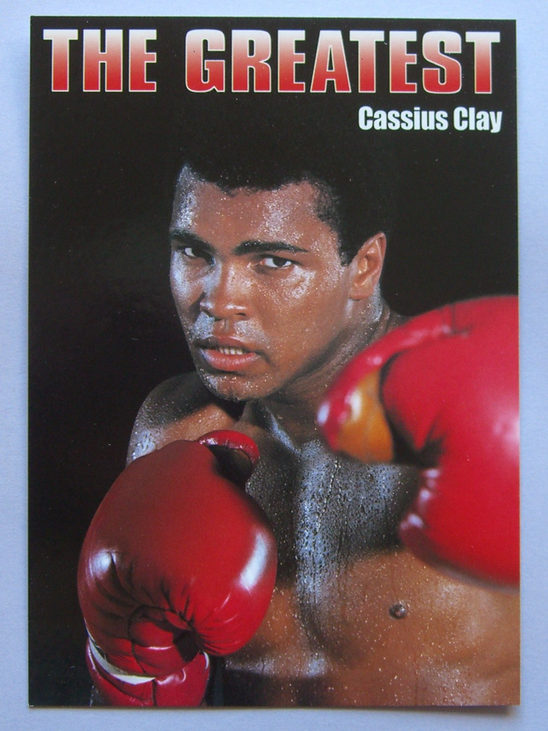 """cassus clay October 11–november 25, 2018 """"no matter how big they got, they started out small"""" long before he was muhammad ali, 12-year-old cassius clay knew he would be a hero someday, no matter what anyone else had to say."""
